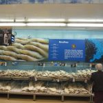 魚介類食べるならこの国(ポルトガル・リスボン編No.4)